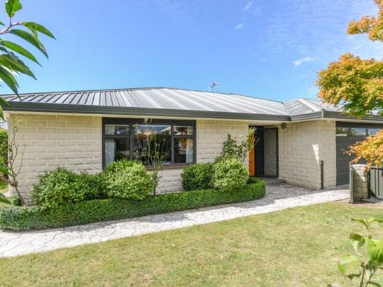 151 Auckland Road, Greenmeadows, Napier - NZL (photo 1)