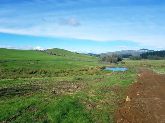 5645. West Coast Road, Springfield, Selwyn - NZL (photo 4)