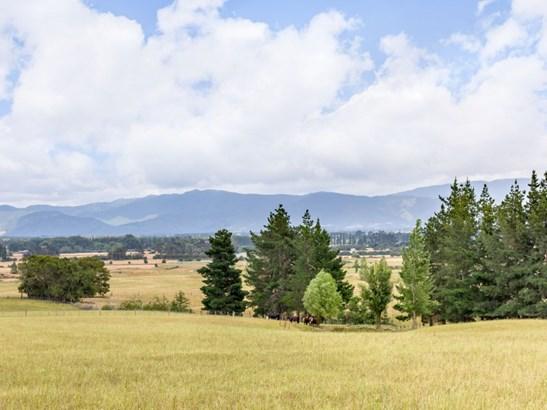 184b Glenmorven Road, Morrisons Bush, South Wairarapa - NZL (photo 4)
