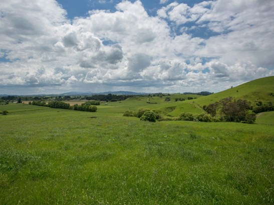 184c Kuranui Road, Morrinsville, Matamata-piako - NZL (photo 3)