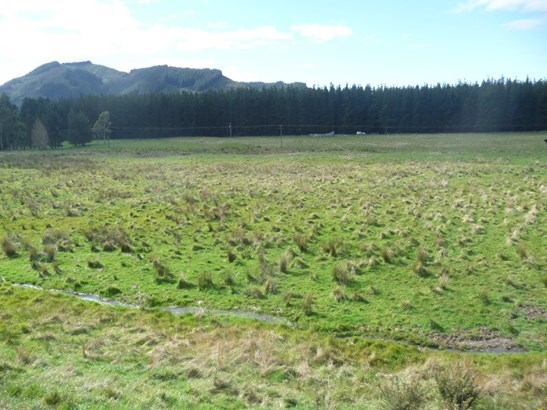 - Waiohine Valley Road, Woodside, South Wairarapa - NZL (photo 5)