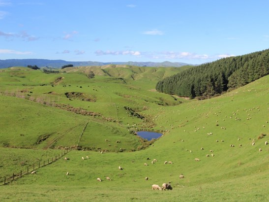 498 Ridge Road North, Pahiatua, Tararua - NZL (photo 1)