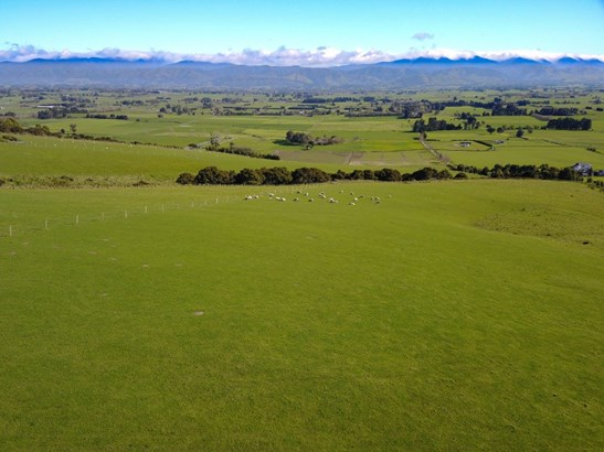 123 Tiffin Hill Drive, Carterton - NZL (photo 3)