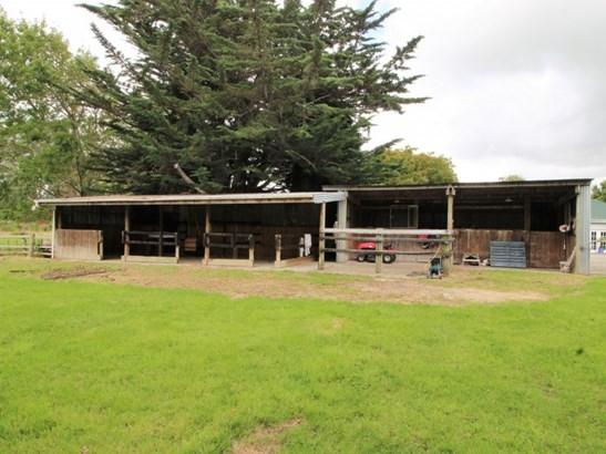 34 Gladstone Street, Woodville, Tararua - NZL (photo 4)