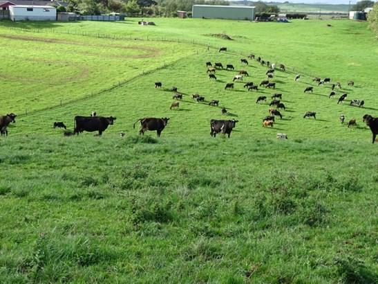 114 Pukekapia Road, Rd2 , Huntly, Waikato - NZL (photo 4)