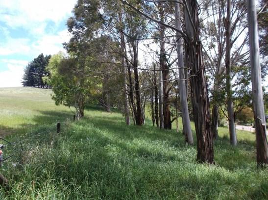2 Homewood Road, Waipawa, Central Hawkes Bay - NZL (photo 5)