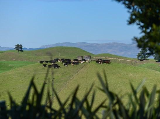 364 Swamp Road, Puketapu, Hastings - NZL (photo 3)