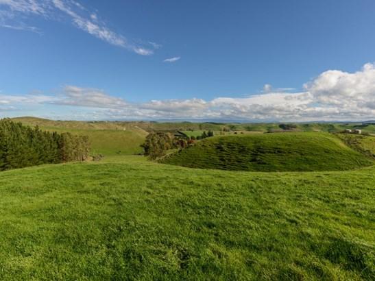 364 Swamp Road, Puketapu, Hastings - NZL (photo 4)