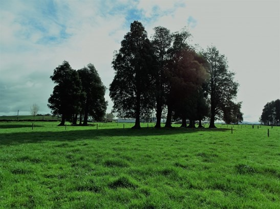 38 Gower Road, Gordonton, Waikato - NZL (photo 3)