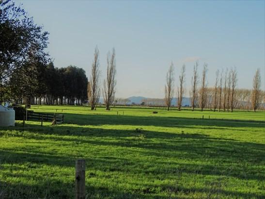 38 Gower Road, Gordonton, Waikato - NZL (photo 4)