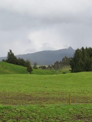 671 Sandel Road, Whakamaru, Taupo - NZL (photo 5)