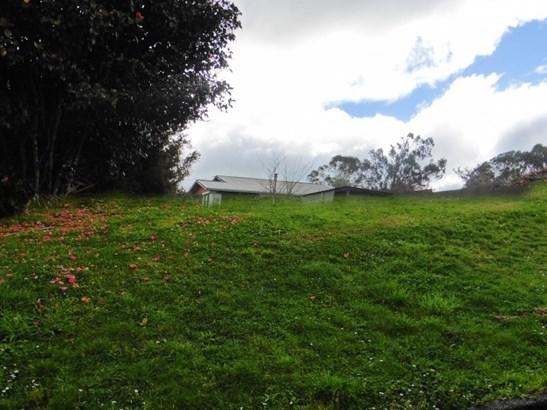 1 Kawana Street, Piopio, Waitomo - NZL (photo 2)
