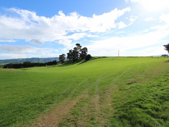 498 Ridge Road North, Pahiatua, Tararua - NZL (photo 2)