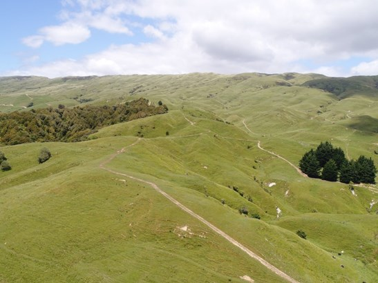 934 Coonoor Road , Makuri, Pahiatua - NZL (photo 1)