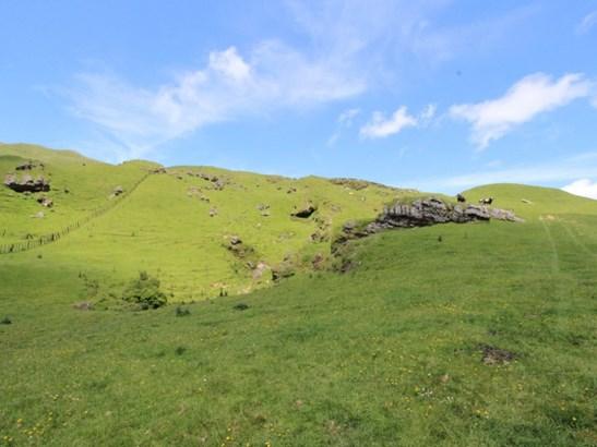 934 Coonoor Road , Makuri, Pahiatua - NZL (photo 3)