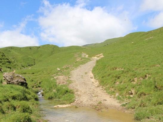 934 Coonoor Road , Makuri, Pahiatua - NZL (photo 4)