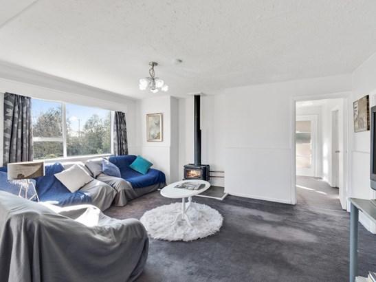 144 Rolleston Street, Rakaia, Ashburton - NZL (photo 4)