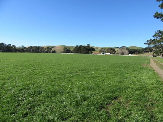 3245 State Highway 2 , Waipukurau, Central Hawkes Bay - NZL (photo 3)
