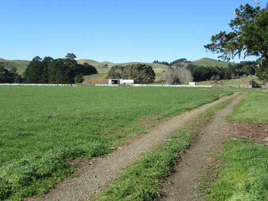 3245 State Highway 2 , Waipukurau, Central Hawkes Bay - NZL (photo 4)