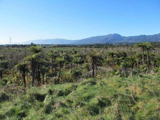 Lot 2 Lower Buller Gorge Road, Westport Surrounds, Buller - NZL (photo 4)
