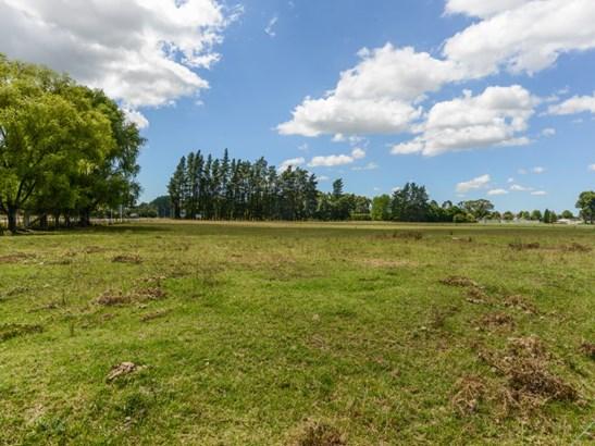 - State Highway 2, Otane, Central Hawkes Bay - NZL (photo 3)