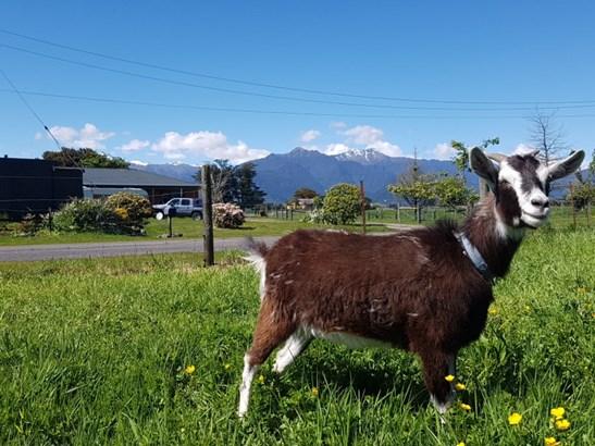 Lot 3 And 4 Acland Street, Kokatahi, Westland - NZL (photo 3)