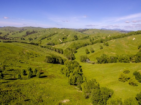 - Clifton Grove Road, Gladstone, Masterton - NZL (photo 2)