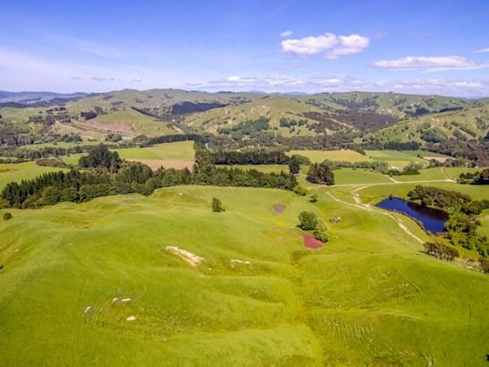 - Clifton Grove Road, Gladstone, Masterton - NZL (photo 4)