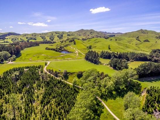 - Clifton Grove Road, Gladstone, Masterton - NZL (photo 5)
