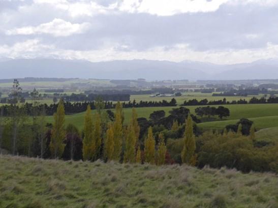 21 Southdown Drive, Martinborough, South Wairarapa - NZL (photo 5)