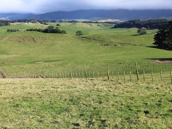 - Armstrong Road, Dannevirke, Tararua - NZL (photo 1)