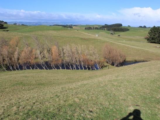 - Armstrong Road, Dannevirke, Tararua - NZL (photo 4)