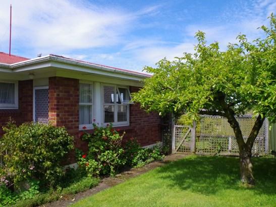 34 Domain Road, Waipawa, Central Hawkes Bay - NZL (photo 2)