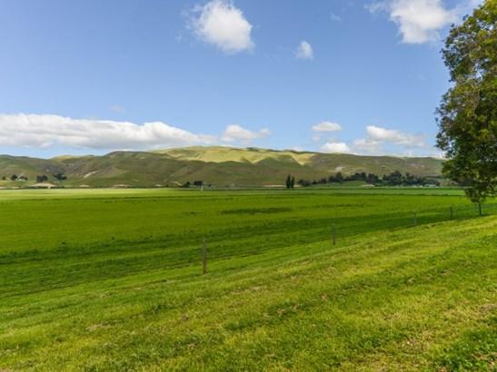 - Mutiny Road, Poukawa, Hastings - NZL (photo 5)