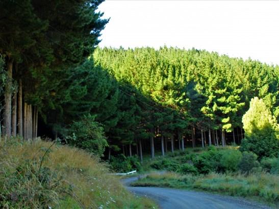 - Morea Road, Hawera, South Taranaki - NZL (photo 1)