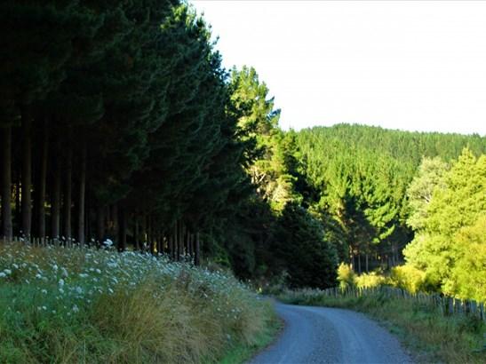 - Morea Road, Hawera, South Taranaki - NZL (photo 4)