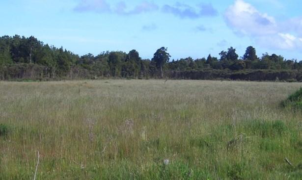 - State Highway 6, Charleston, Buller - NZL (photo 4)