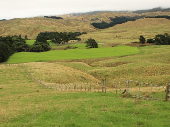912 Range Road, Pongaroa, Tararua - NZL (photo 1)