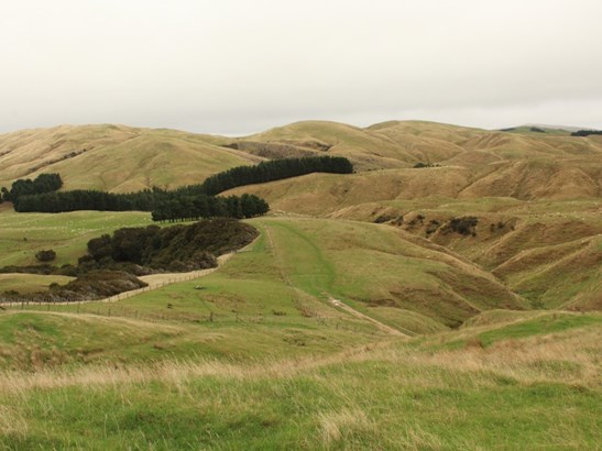912 Range Road, Pongaroa, Tararua - NZL (photo 2)