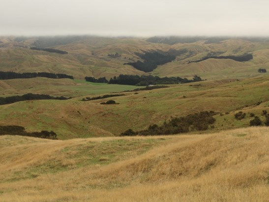 912 Range Road, Pongaroa, Tararua - NZL (photo 4)