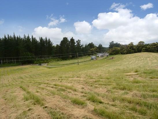 1383 Kereru Road, Maraekakaho, Hastings - NZL (photo 4)