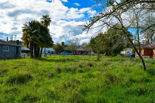 169 Miro Street, Taumarunui, Ruapehu - NZL (photo 3)