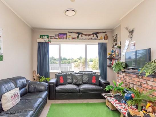 45 Frederick Street, Terrace End, Palmerston North - NZL (photo 3)