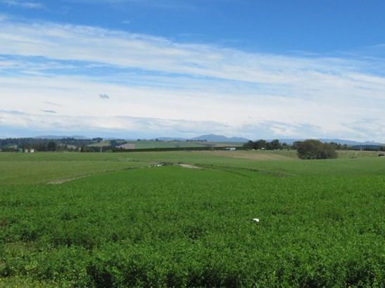 547 Claremont Road, Claremont, Timaru - NZL (photo 3)