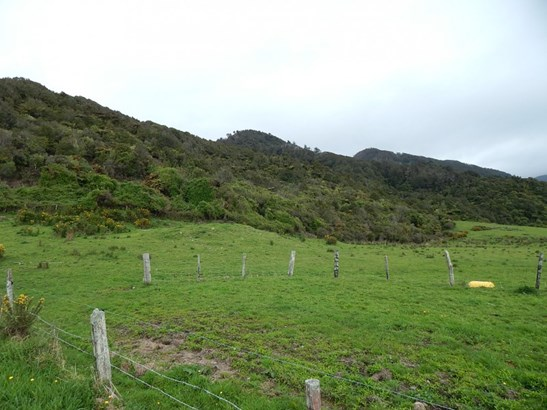 . State Highway 6, Barrytown, Buller - NZL (photo 4)