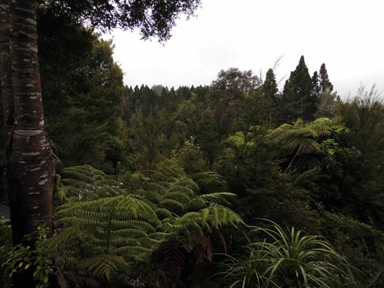 509a Old Maratoto Road, Hikutaia, Thames - NZL (photo 5)