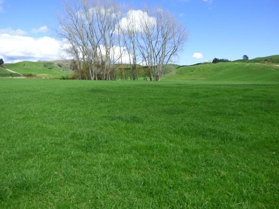 Kinleith, South Waikato - NZL (photo 2)