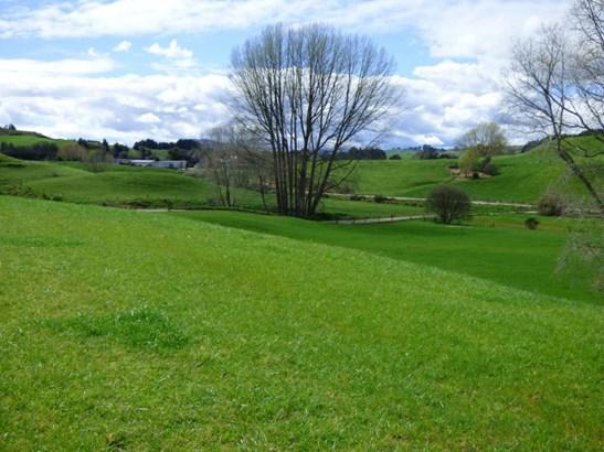Kinleith, South Waikato - NZL (photo 3)