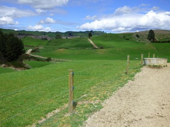 Kinleith, South Waikato - NZL (photo 5)