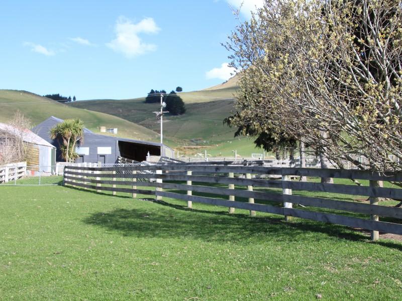 Palmerston, Otago - NZL (photo 5)